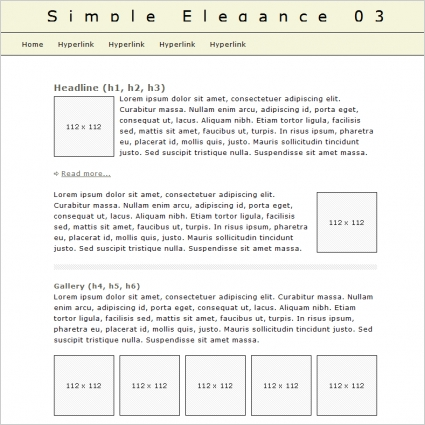 Simple Elegance 03 Template