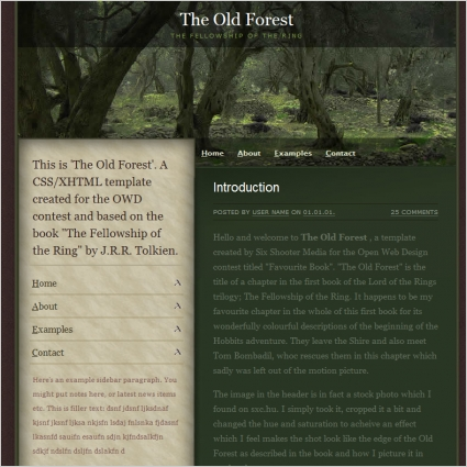 The Old Forest Template Free website templates in css, html