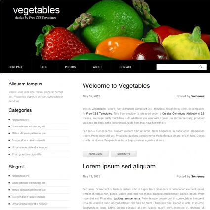 vegetable free website templates in css html js format for free