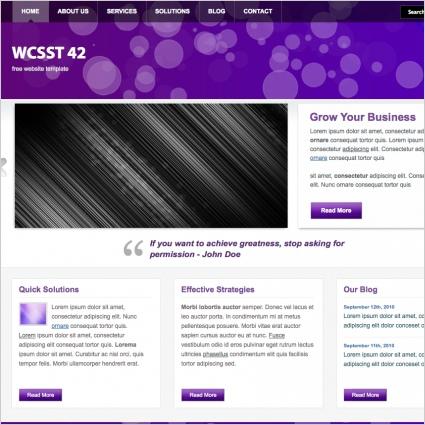 WCSST 42 Template