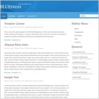 BluePrism Template