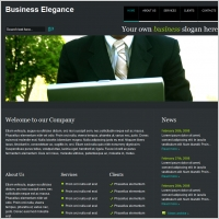Business Elegance Template