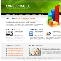Consulting Co. Template