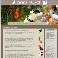 Dogs Palace Template
