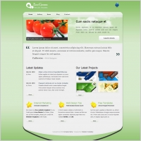 5 Pages Template Free Website Templates For Free Download About