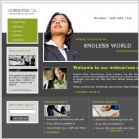 Enterprise Co. Template