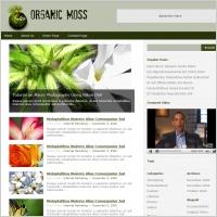 Organic Moss Template