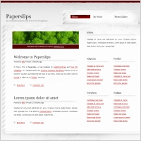 paper slips