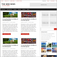The Web News Template