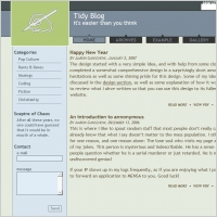Tidy Blog Template