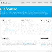 WCSST 10 Template
