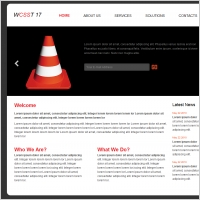 WCSST 17 Template