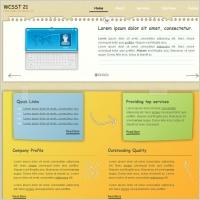 WCSST 21 Template