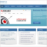 WCSST 25 Template