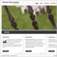 WCSST 33 Template