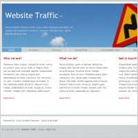 Website Traffic Template