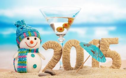 2015 Christmas New Year