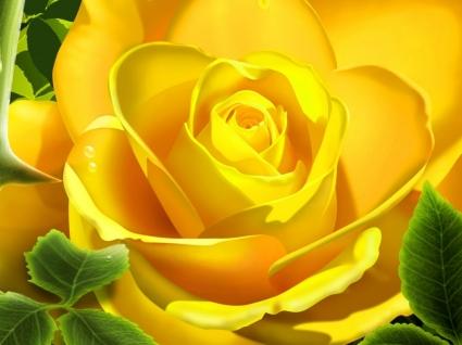 3D Yellow Rose Wallpaper 3D Models 3D