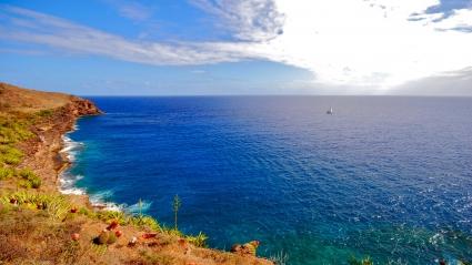 Alone in Sea