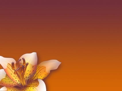 Aqua Flower Wallpaper Abstract 3D