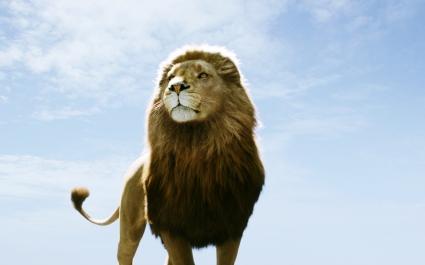 Aslan in Narnia Dawn Treader