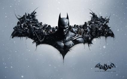 Batman Arkham Origins Video Game