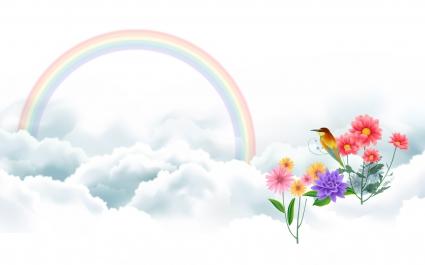 Bird and Rainbow
