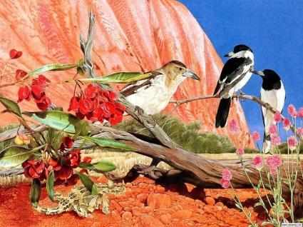 Birds Communicating