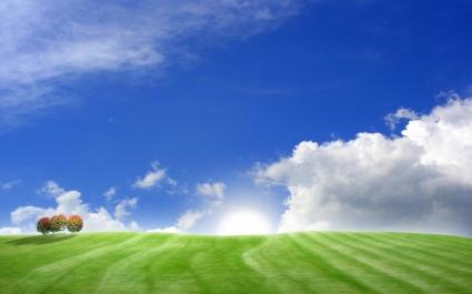 Blue Green Bliss
