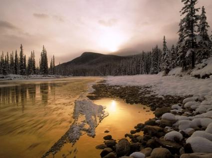 Bow River Wallpaper Winter Nature