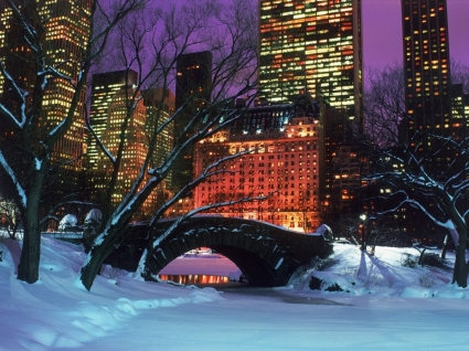 Central Park in Winter Wallpaper Winter Nature