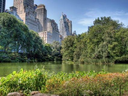 Central Park Wallpaper United States World