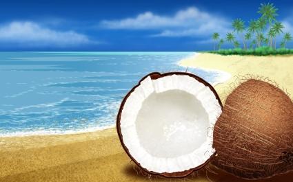 Coconuts HD Wide