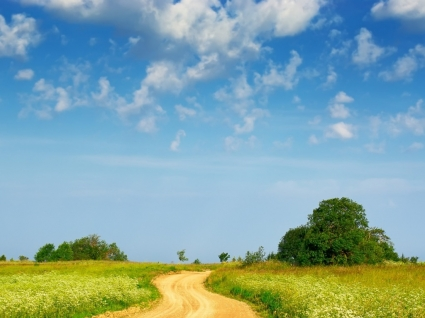 Country path Wallpaper Landscape Nature
