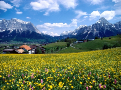 Countryside Splendor France
