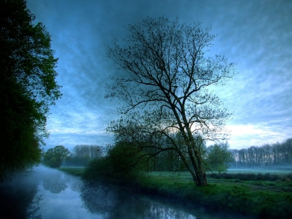 Dark River Wallpaper Landscape Nature