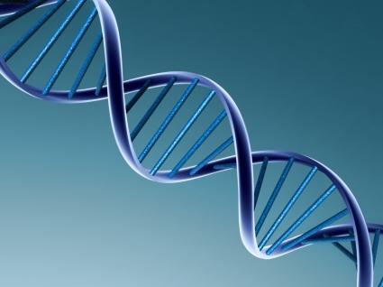 DNA Wallpaper 3D Models 3D
