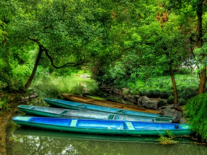 Dragon Boats Wallpaper High Dynamic Range Nature