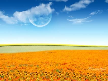 Dreamy Flower World