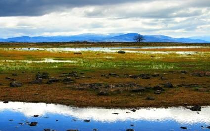 Echoes Of A Dream Wallpaper Landscape Nature
