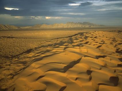 El Pinacate Gran Desierto del Altar Biosphere Reserve Wallpaper Mexico World