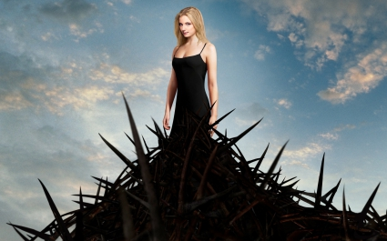 Emily VanCamp in Revenge