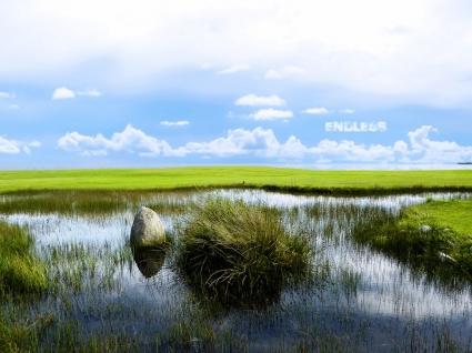 Endless Wallpaper Photo Manipulated Nature