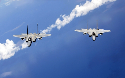 F 15 Eagles from the Air National Guard