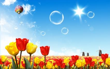 Fantasy World of Flowers