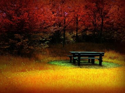 Fire autumn Wallpaper Autumn Nature