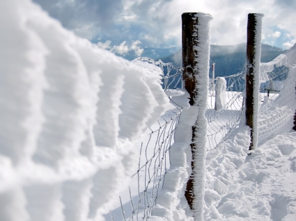 First Snow Wallpaper Winter Nature