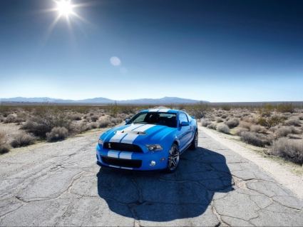 Ford Shelby GT500 Wallpaper Ford Cars