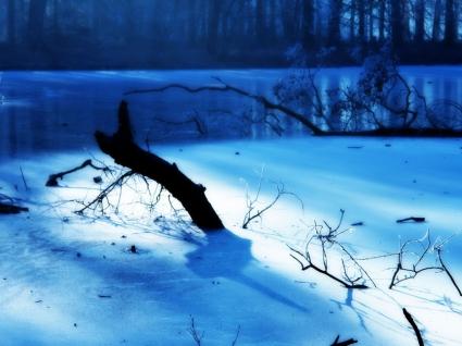 Frozen Wallpaper Winter Nature