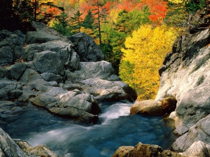 Glen Ellis Falls Wallpaper Waterfalls Nature